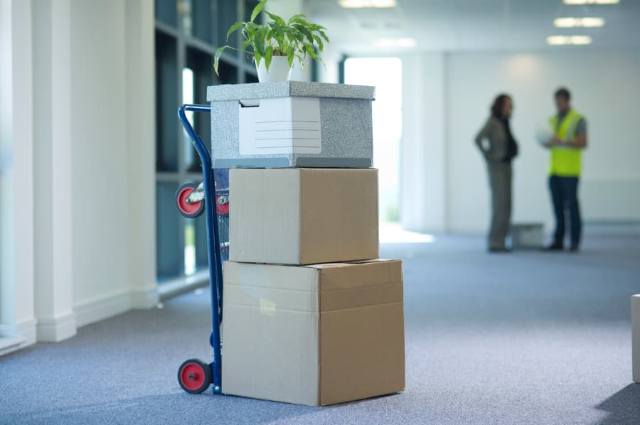 dolly with boxes and a plant loaded onto it in a commercial hall